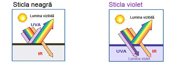 Argint coloidal antibiotic natural Sticla Violet 6